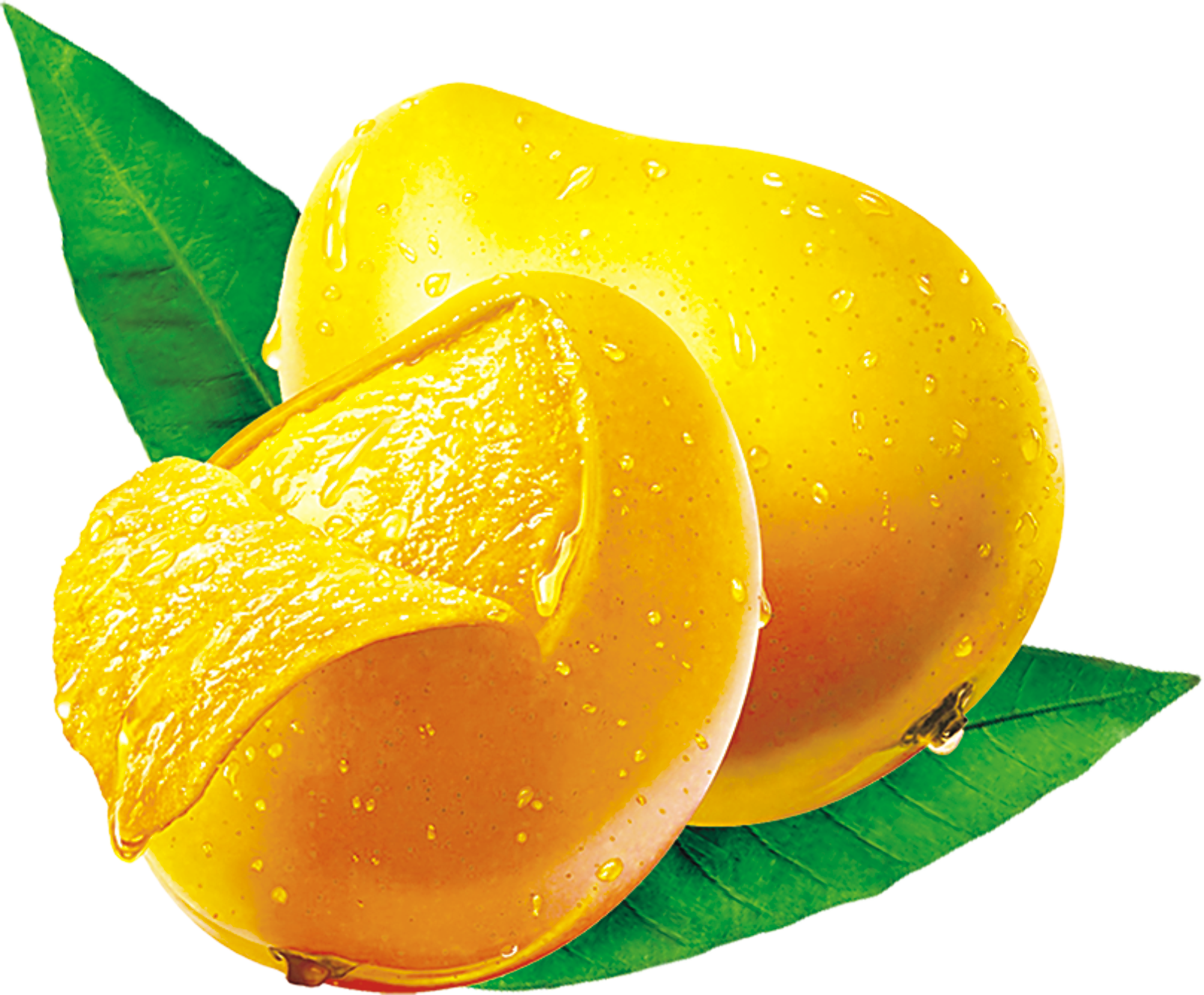 Mango PNG Images Transparent Free Download.