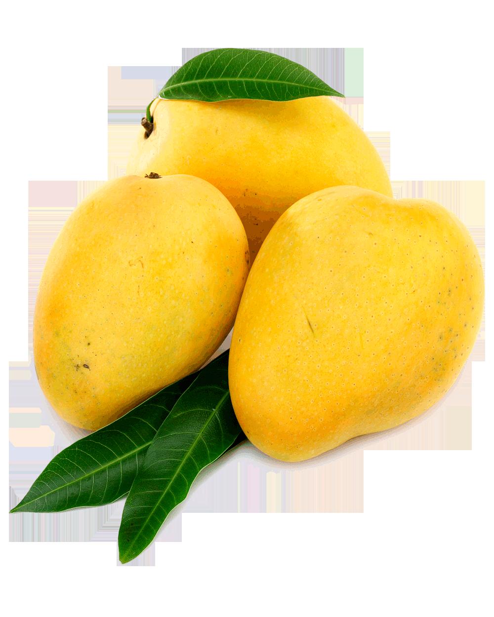 Mango PNG Images Transparent Free Download.