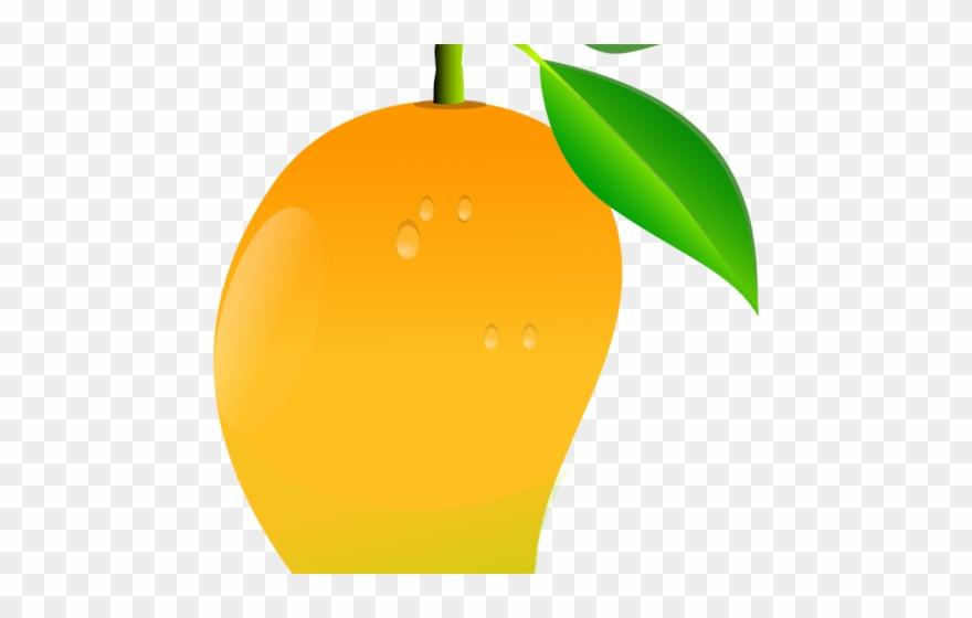 Orange Fruit Clipart Mango.