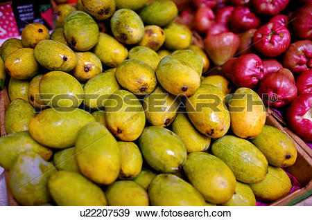 Stock Photograph of Pile of mangoes on display in a box, next to a.