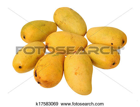 Stock Photograph of eight mangoes k17583069.