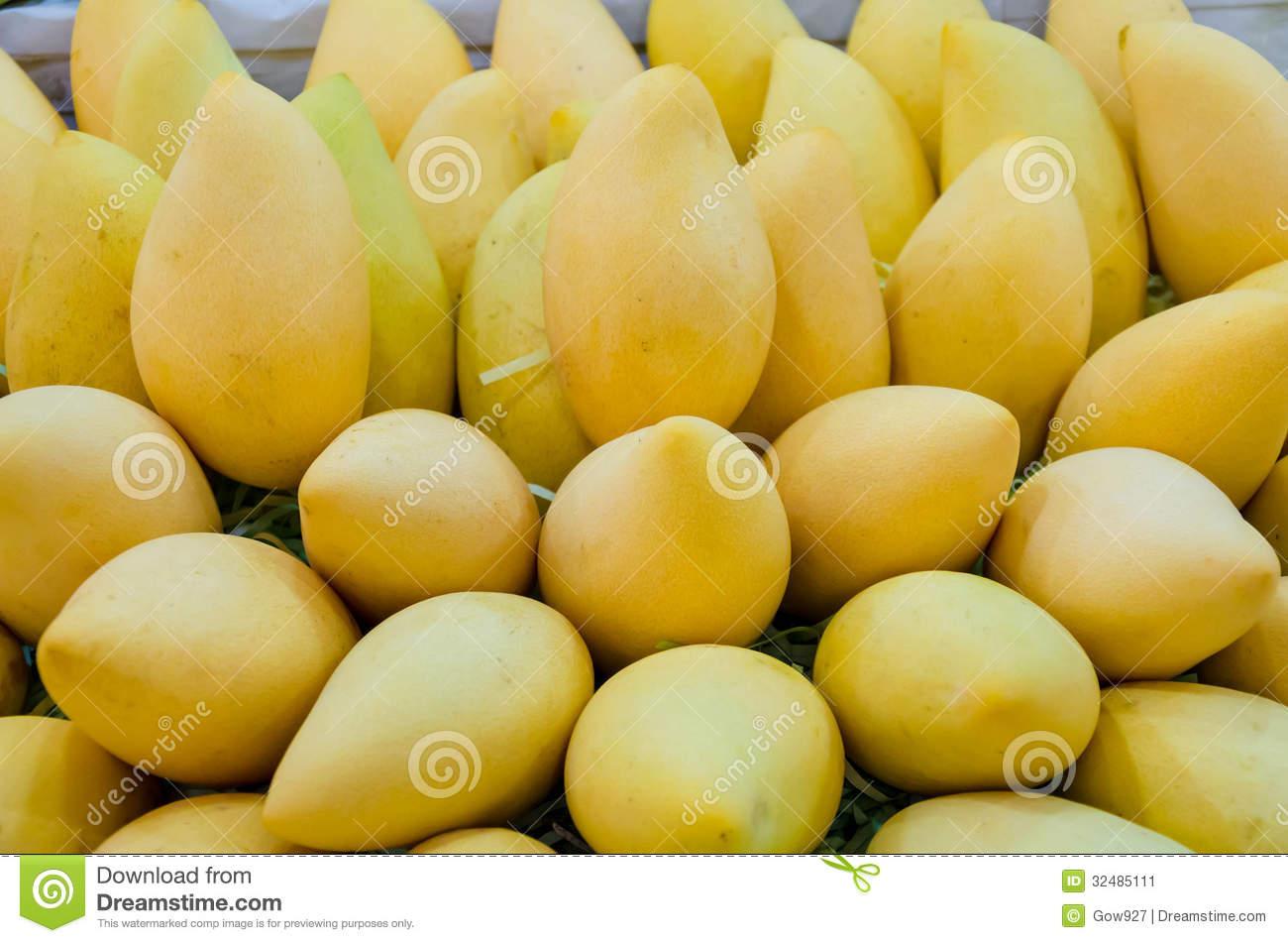 Mango Pile Stock Photo.