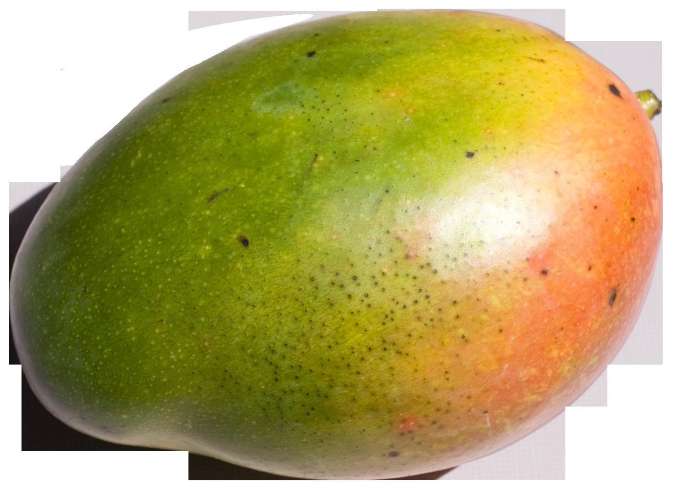 Mango PNG Image.