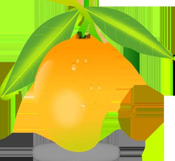 Mango PNG images free download.