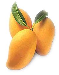 Mangoes Clip Art Download.