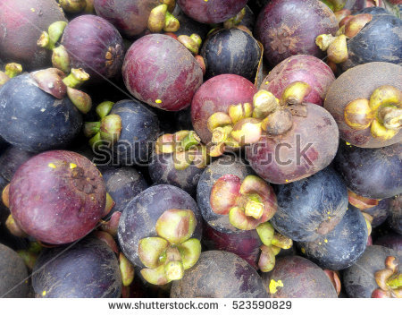 New Fruit Tree Stock Photos, Royalty.