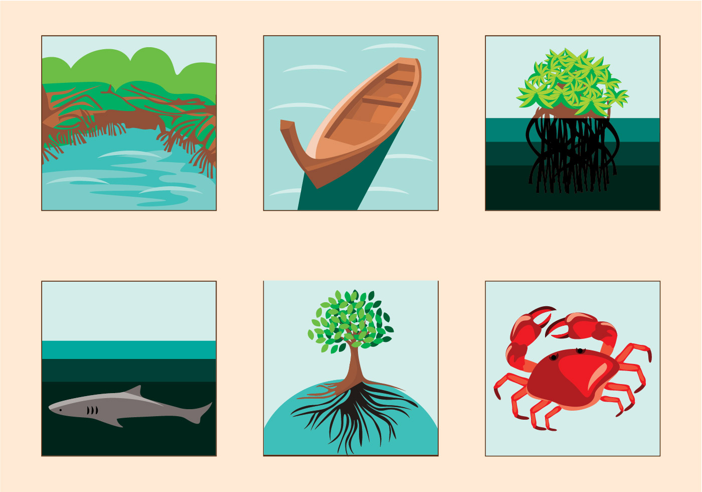 Free Mangrove Illustration.