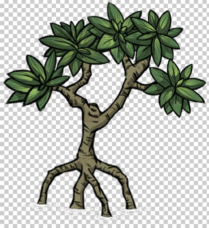 Mangrove Tree Don't Starve Plant Biome PNG, Clipart, Biome.