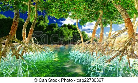 Stock Illustration of Red mangroves on Florida coast csp22730367.