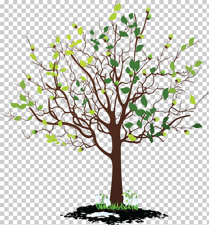 Tree , animated mangrove forest PNG clipart.
