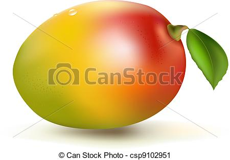 Mango Illustrations and Clipart. 2,548 Mango royalty free.