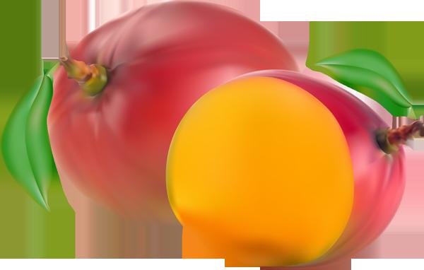 Mangue clipart #15