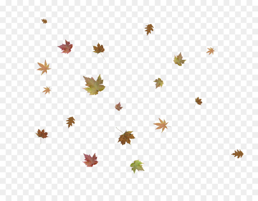 Autumn Sky png download.