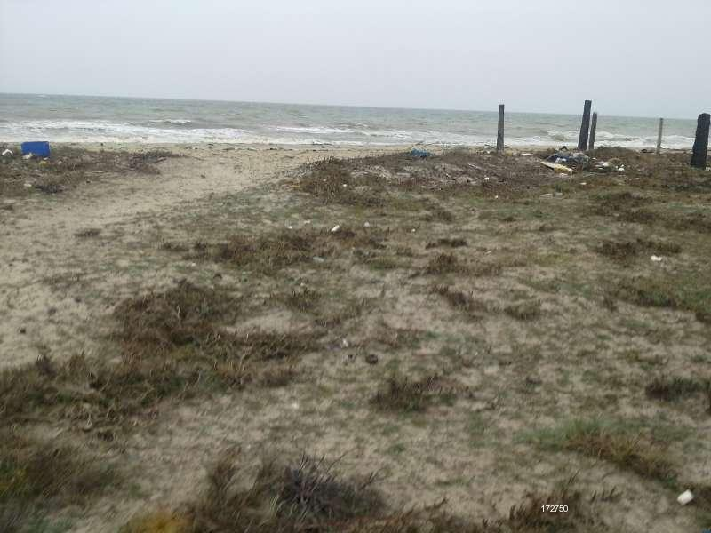 Beachfront land for sale in Mannar.