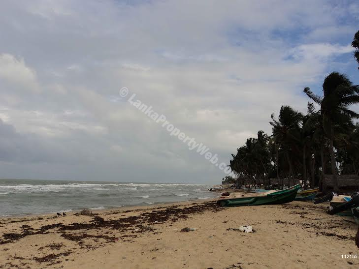 Land for sale in Mannar.