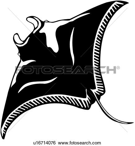 Clip Art of , animal, fish, manta ray, ocean, sting ray, stingray.