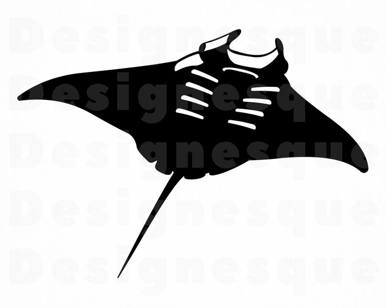 Manta Ray SVG, Manta Ray Clipart, Manta Ray Files for Cricut, Manta Ray Cut  Files For Silhouette, Manta Ray Dxf, Manta Ray Png, Eps, Vector.