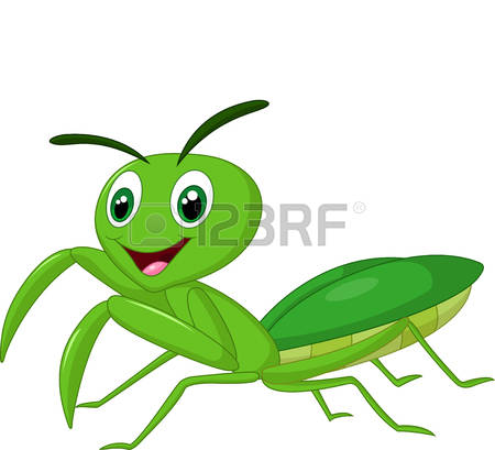162 Pray Mantis Stock Illustrations, Cliparts And Royalty Free.