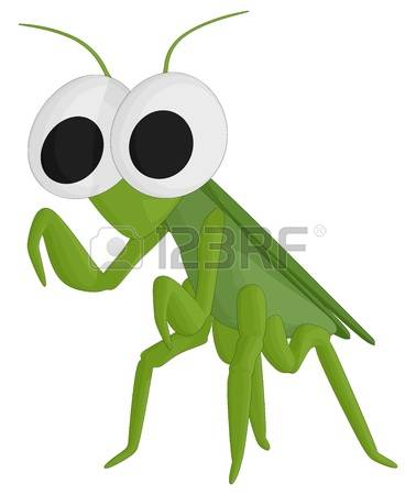 163 Predatory Insects Stock Vector Illustration And Royalty Free.