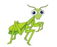 Mantis Clipart.