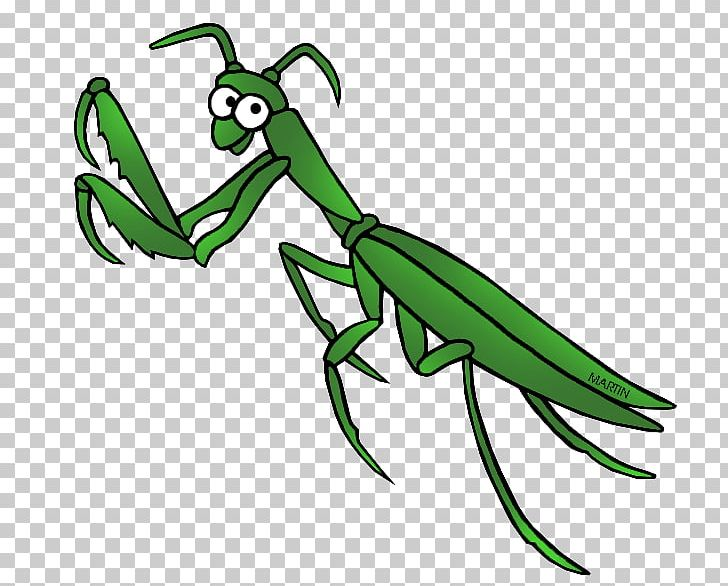 Mantis PNG, Clipart, Animal, Animal Figure, Art, Arthropod.