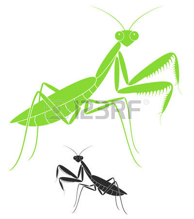 649 Mantis Stock Illustrations, Cliparts And Royalty Free Mantis.