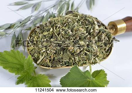 Stock Photo of A mixture of herbs on a brass scoop (oats, stinging.