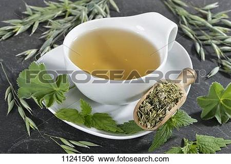 Stock Images of A cup of herbal tea made from oats, stinging.