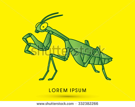 Mantodea Stock Vectors & Vector Clip Art.