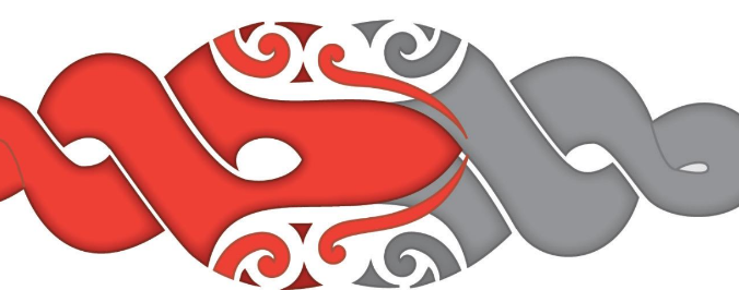 Papa Pounamu : New Zealand Planning Institute.
