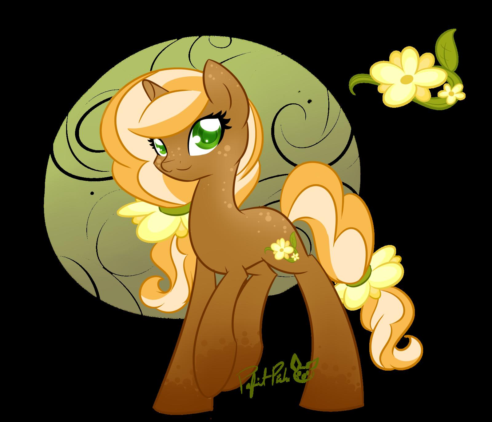 Maple Blossom.