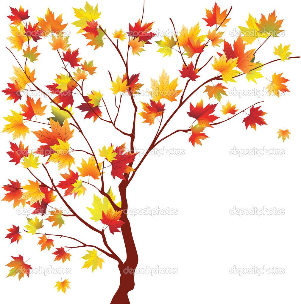Autumn maple — Stock Vector © Megapixelina #5417966.
