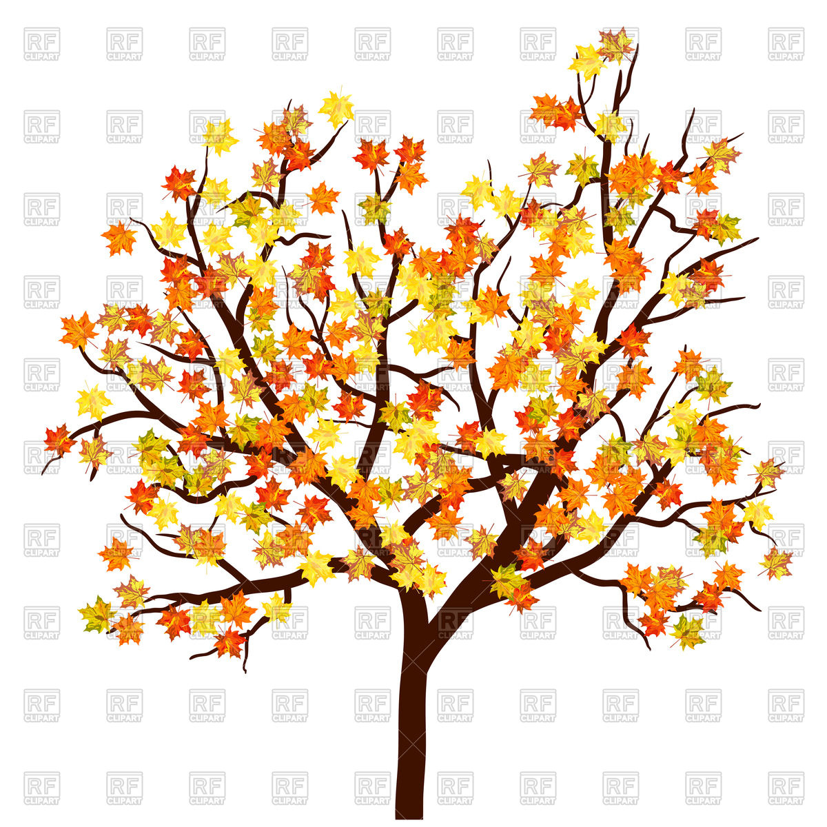 Autumn maple tree Vector Image #107946.