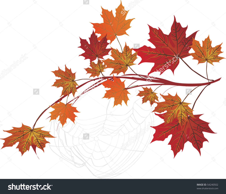 Illustration Maple Branch Spider Web Stock Vector 54240502.