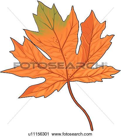 Clipart of Maple Leaf u11156301.
