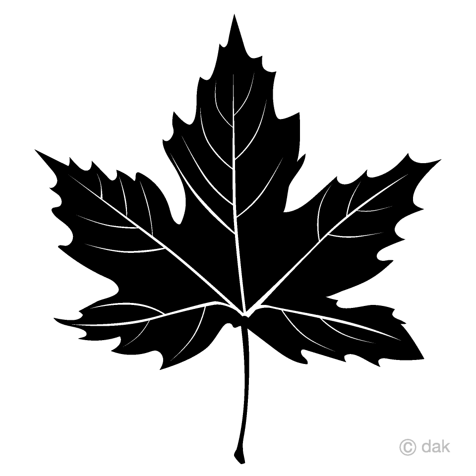 Black and White Maple Clipart Free Picture|Illustoon.