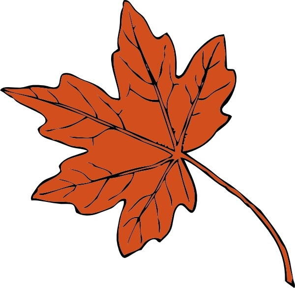 Maple Leaf clip art Free vector in Open office drawing svg.