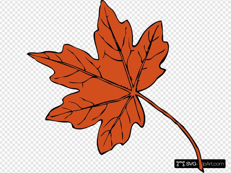Maple Leaf Clip art, Icon and SVG.