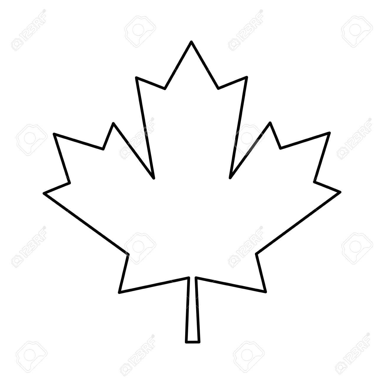 maple leaf green sign canadian outline vector illustration eps...