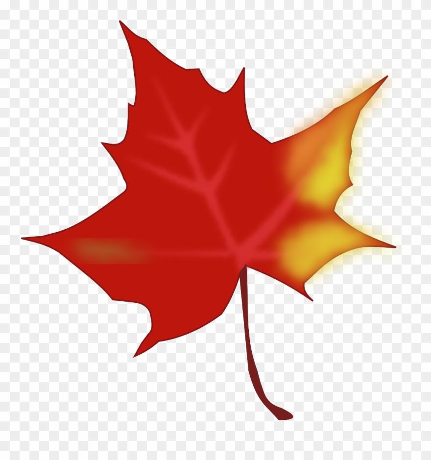 Autumn Fall Leaf Maple Leaf Png Image Clipart (#2368954.