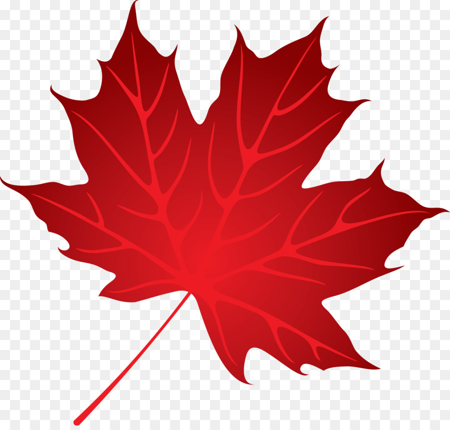 Maple Leaf Png (99+ images in Collection) Page 2.