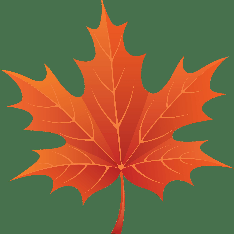 Brown Maple Leaf transparent PNG.