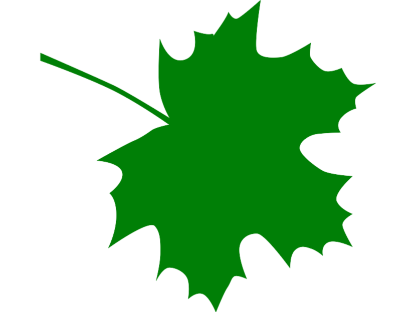 Maple Leaf Clip Art.