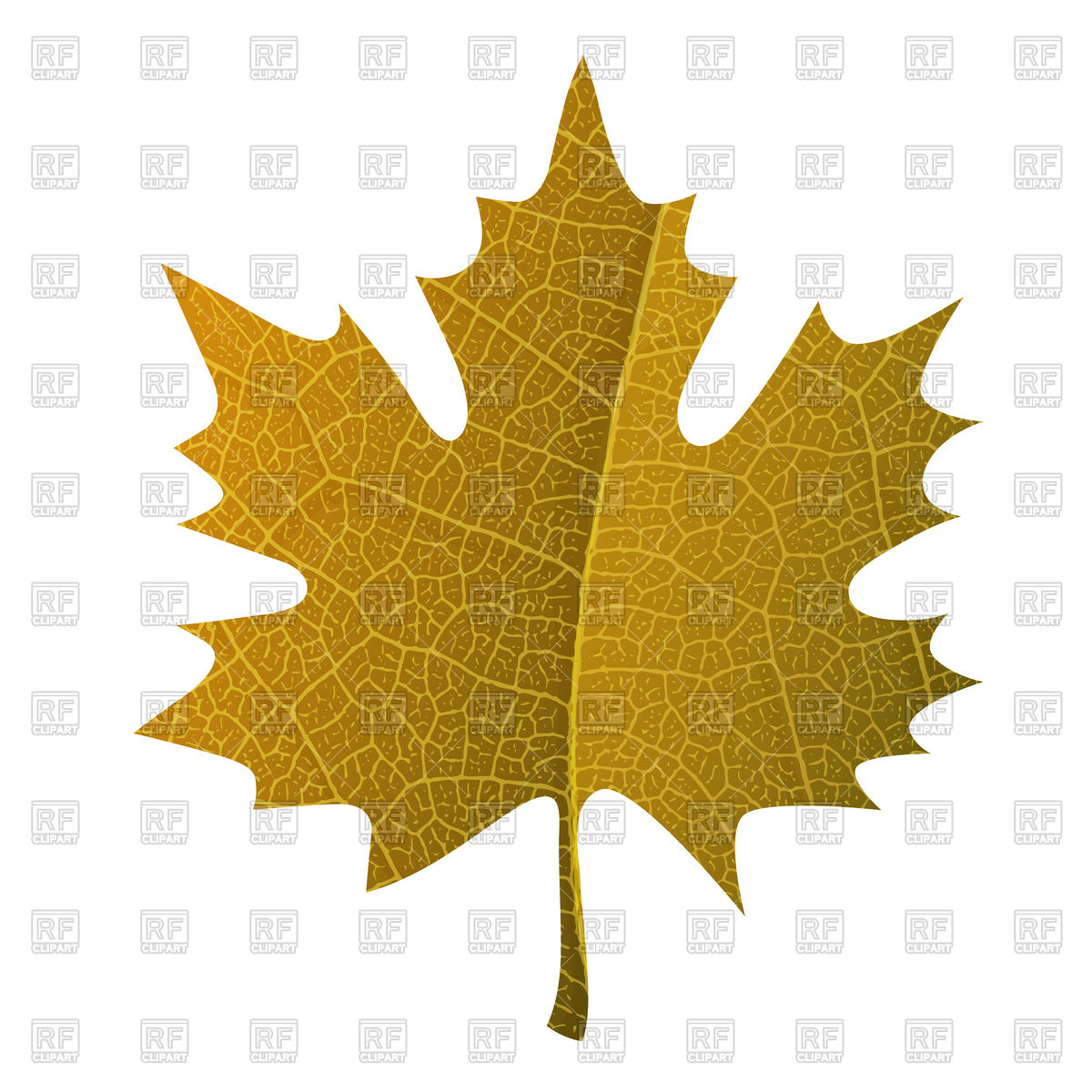 Orange maple leaf Vector Image #108937.