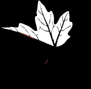 Maple leaf clip art black and white.