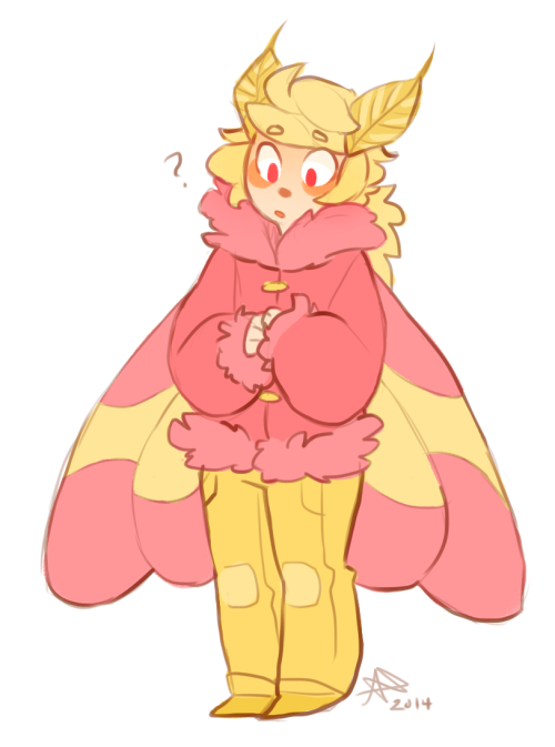 rosy maple moth oc.
