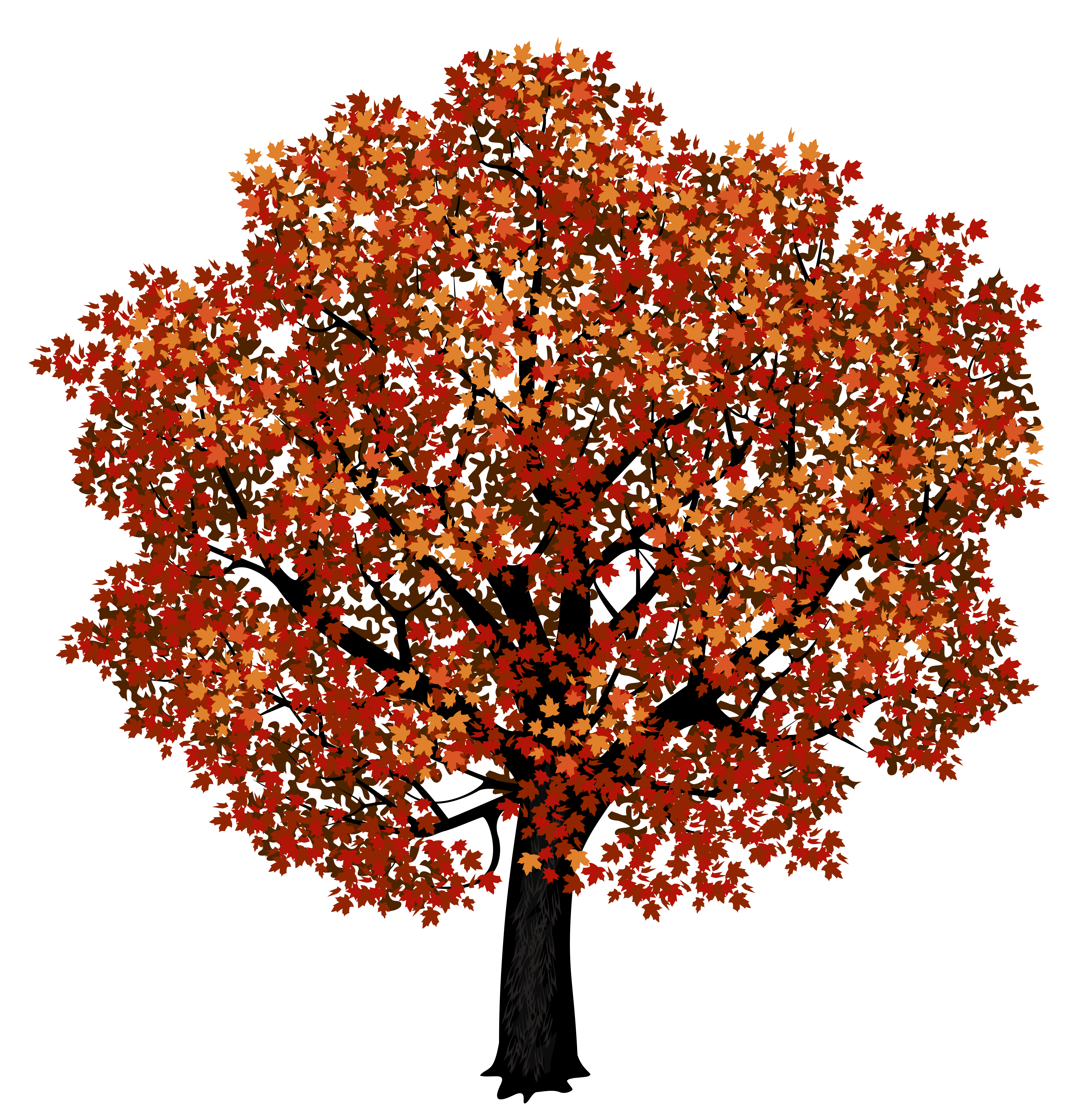 Red Maple Tree PNG Clipart Picture.
