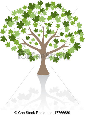 Vector of Maple tree Vector Illustration. csp17766689.