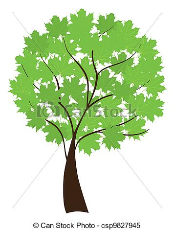 Clipart Vector of maple tree.