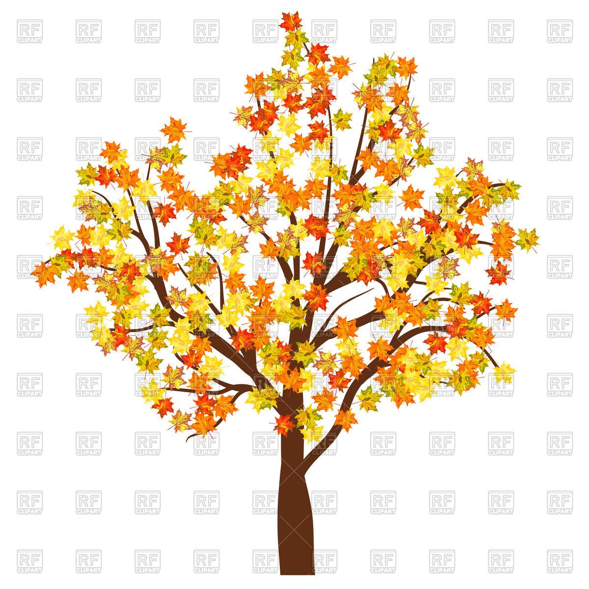 Autumn maple tree Stock Vector Image.
